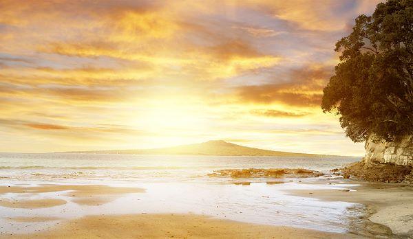 rangitoto island inspiration