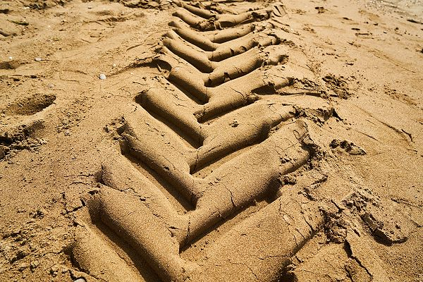 tracks in sand indicate past movement